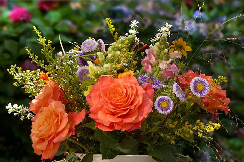 flowers-2719357_1920