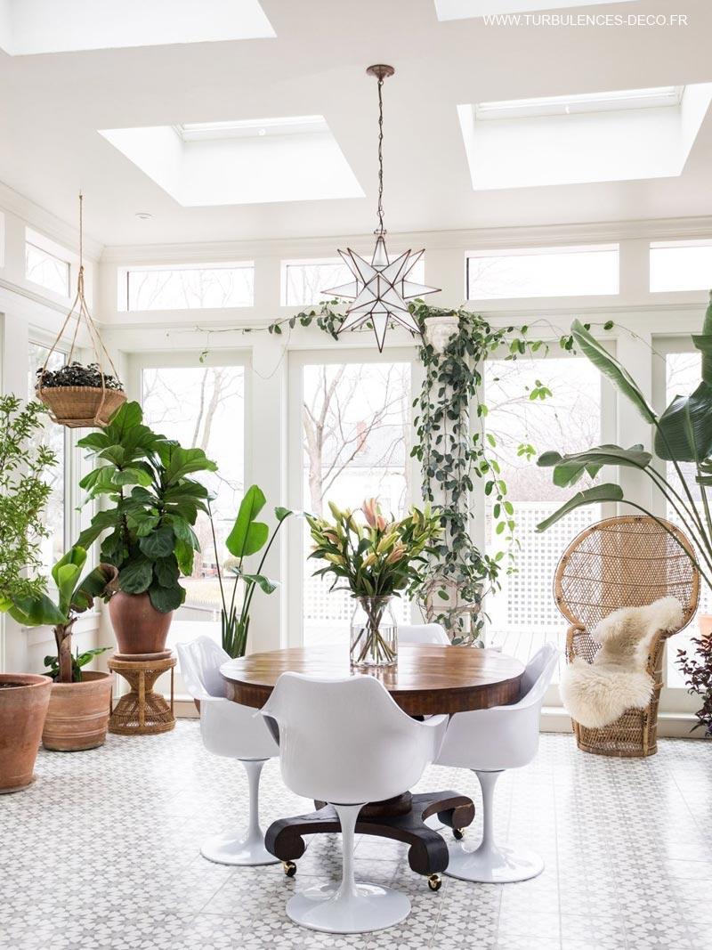 des plantes pour une véranda nature