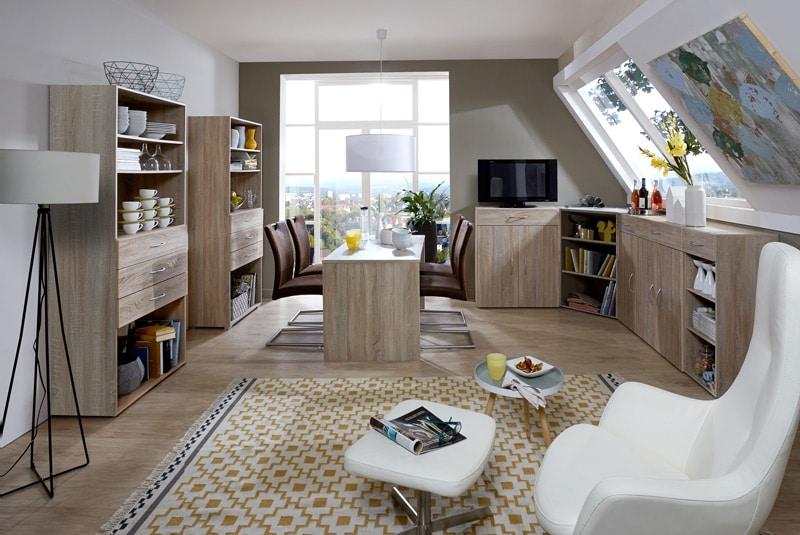 des meubles de rangement pratique pour le séjour